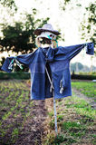 Scarecrow in farm Royalty Free Stock Photography