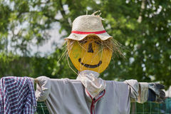 Scarecrow in the farm. Funny scarecrow in the farm Stock Image