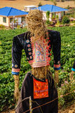 A scarecrow on farm Royalty Free Stock Image