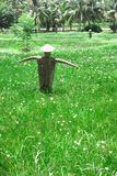 Scarecrow in a farm Royalty Free Stock Images