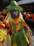 Scarecrow at a Farmers' Market. A scarecrow among fresh pumpkins and other fresh produce at a local farm stand in North Carolina royalty free stock photography