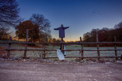 Scarecrow on a fence Royalty Free Stock Photo