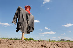 Scarecrow on the field Royalty Free Stock Photography