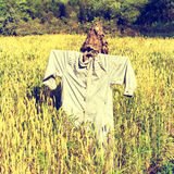 Scarecrow on the field Stock Photo