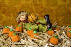 Scarecrow Figurine Stock Photos