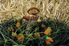 Scarecrow Figurine Stock Photography