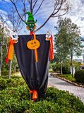 Scarecrow Frankenstein with pumpkins and skulls,. In a park outside in a sunny day stock photography