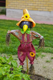 Scarecrow fright. Scarecrow in a kitchen garden, the seasonal dacha a fright Royalty Free Stock Photo