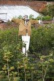 Scarecrow in a fruit garden Royalty Free Stock Photo
