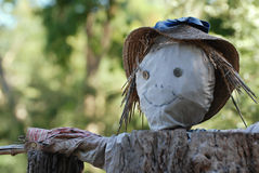 Scarecrow in a garden. Against the birds stock photo