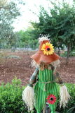 scarecrow in the garden Stock Images
