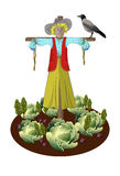 scarecrow in the garden with vegetables and crows. Vector illustration Stock Images