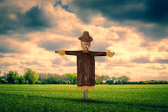 Scarecrow on a green field Royalty Free Stock Photos