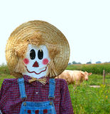 Scarecrow Guarding the Cows Royalty Free Stock Photography