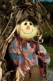 Scarecrow i havren Arkivbilder