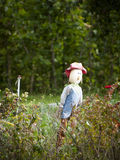 Scarecrow. Lonely scarecrow in vegetable garden Stock Photography