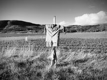 Scarecrow made of old clothes in a field. Blue shirt and brown skirt Scarecrow on cross Stock Images