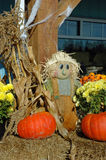 Scarecrow man doll display. Scarecrow man in autumn market display in vertical format Royalty Free Stock Image