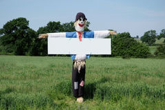 Scarecrow Message. A scarecrow in a field with an attached white notice board which could be used for your message royalty free stock photos