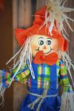 Scarecrow with Orange Hat Royalty Free Stock Photos