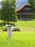Scarecrow on organic farm royalty free stock image