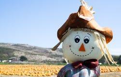 Scarecrow på pumpafältet Arkivfoto