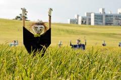 Scarecrow på ricefältet Arkivfoto
