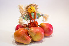 Scarecrow and pears. A funny colorful scarecrow with the pears Royalty Free Stock Photography