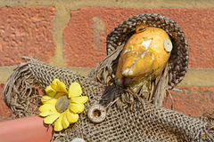 Scarecrow. A photo of a miniature scarecrow Stock Photos