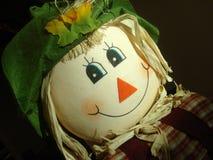 Scarecrow Portrait. A portrait of a friendly scarecrow Stock Photography