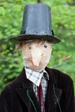 Scarecrow portrait (face on) Royalty Free Stock Images