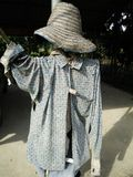 Scarecrow protect birds Stock Photos