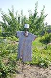 A scarecrow protects a garden from birds stock photography
