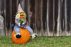 Scarecrow on the pumpkin Royalty Free Stock Photo