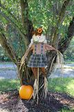 Scarecrow and pumpkin Royalty Free Stock Image