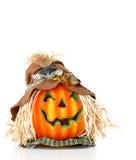 Scarecrow Pumpkin Head stock photo