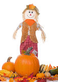 Scarecrow with Pumpkins and Squash Royalty Free Stock Photos
