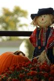 Scarecrow and pumpkins Vertical royalty free stock image