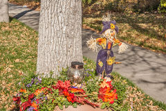 Scarecrow in Purple Stock Images