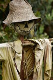Scarecrow`s face. The smile of a home-made scarecrow in his garden Stock Photo