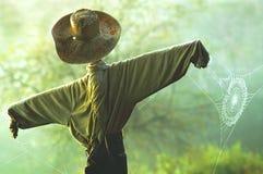 Scarecrow & Spiderweb stock images