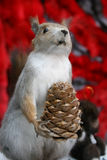 Scarecrow of squirrel with cone Royalty Free Stock Photo