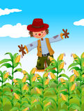 Scarecrow standing in corn field. Illustration Stock Image