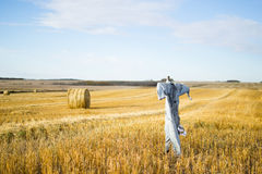 Scarecrow Stands Post Royalty Free Stock Images