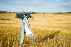 Scarecrow Stands Post Stock Images