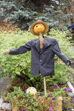 Scarecrow in suit and pumpkin head Royalty Free Stock Image