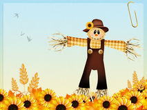 Scarecrow and sunflowers Stock Images