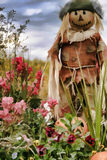Scarecrow. Surrounded by flowers in a farm field Royalty Free Stock Images