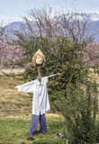 Scarecrow. Used to encourage birds from agricultural plantations Stock Photography
