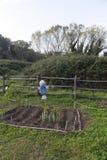 Scarecrow in a vegetable garden Royalty Free Stock Photos